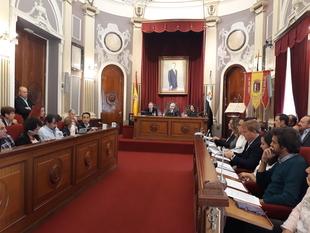 El Pleno del Ayuntamiento pide la creación del