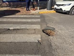 Cabezas pide que se hagan los proyectos pendientes de Valdepasillas y mejorar el mantenimiento
