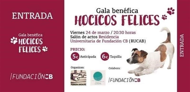 La asociación SOS Perrera Badajoz organizará este viernes la gala benéfica 'Hocicos felices'