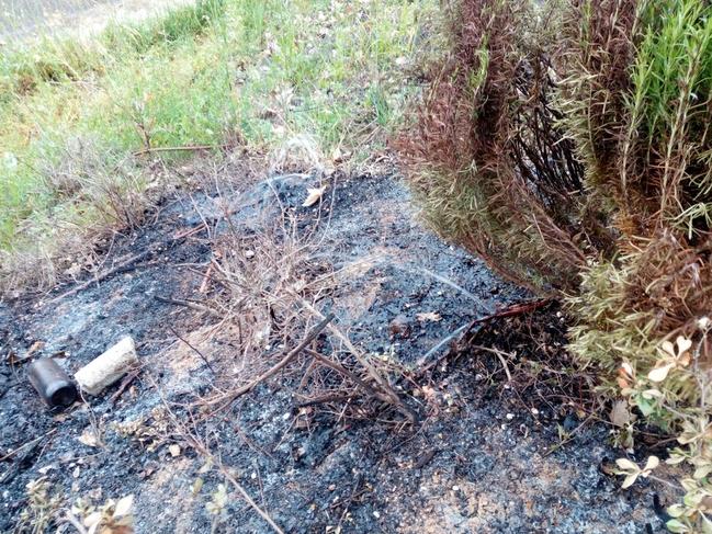 Un grupo de ''bárbaros'' prende fuego en los jardines de San Roque