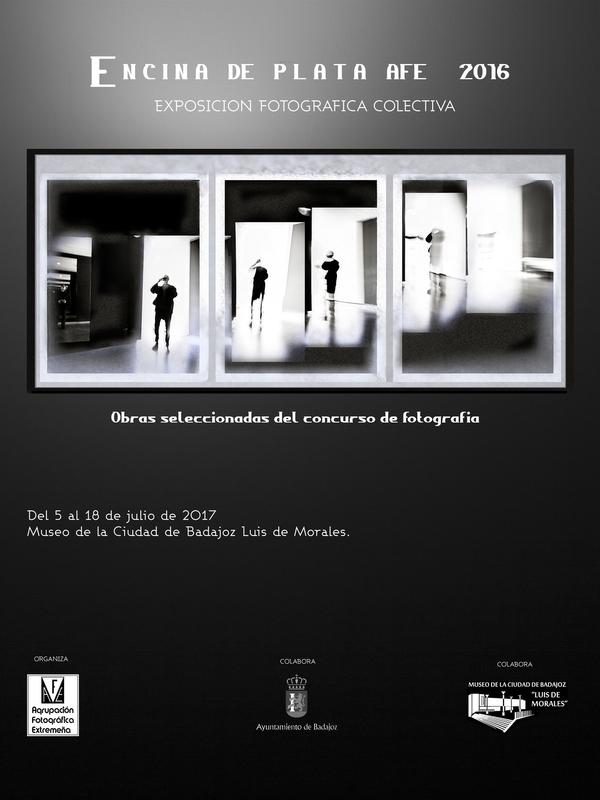 La muestra del certamen 'Encina de Plata AFE 2016' llega al Museo de la Ciudad Luis de Morales