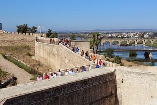 Amigos de Badajoz lamenta el ''retraso'' en la firma de un convenio para mantener un yacimiento descubierto en la Alcazaba