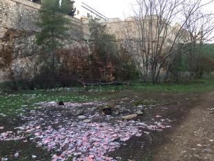 La limpieza de la ladera de la Alcazaba ''se ha realizado por encima de su valor'' según el PSOE