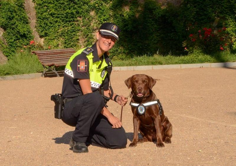 El Equipo de Guías Caninos y Protección de la Policía Local de Badajoz recibirá un reconocimiento nacional por su labor