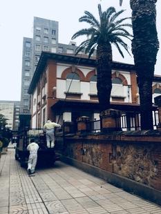 El PSOE denuncia que coincida la fumigación de las palmeras con la entrada del alumnado al colegio General Navarro