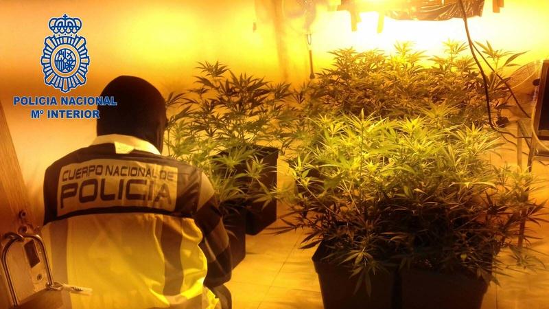 La Policía Nacional desarticula un punto de venta de droga regentado por un menor