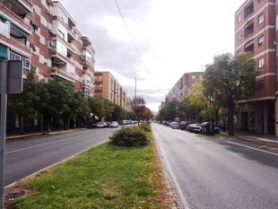 Cs Badajoz exige al equipo de Gobierno que no tale los olmos de Carolina Coronado