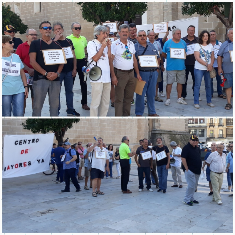 Una veintena de personas se concentra frente al ayuntamiento para exigir que no se talen los olmos de San Fernando