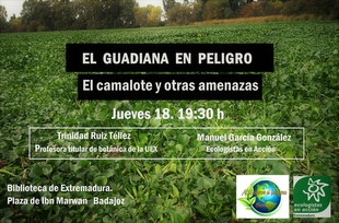 Conferencia en Badajoz sobre el Camalote en el Guadiana