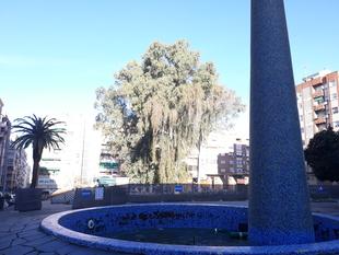 Santa Marina quiere una Plaza de Santa Marta segura, higiénica y habitable