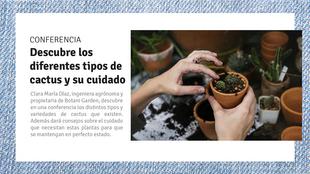 Muestra de Cactus para Coleccionistas
