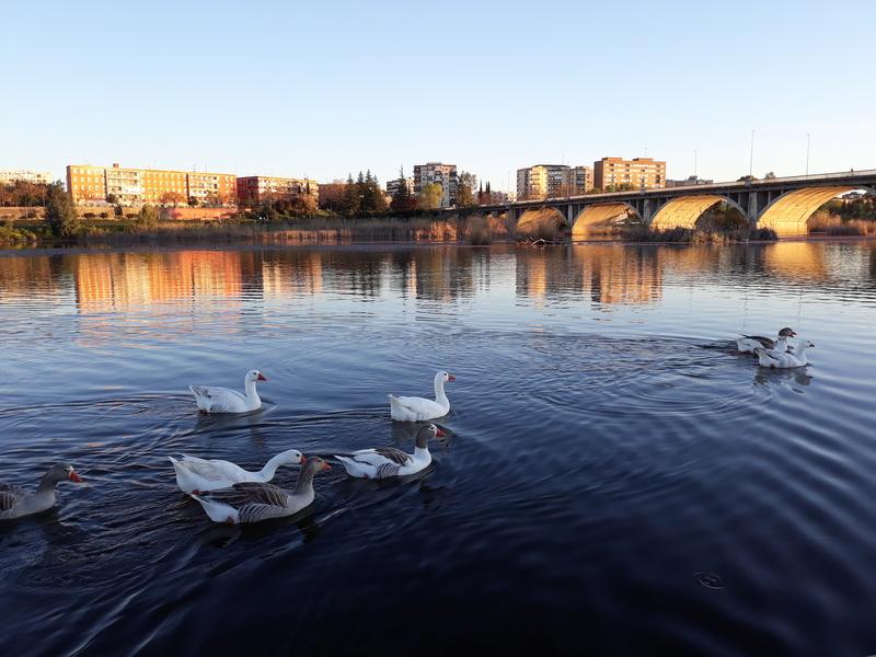 El parque Guadiana en el Top 10 de los mejores parques de España
