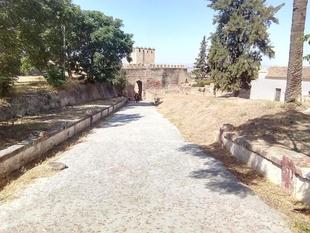 Realizado el desbroce de la parte de la Alcazaba más próxima al museo