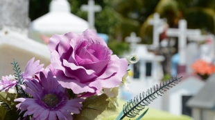 Desde este jueves están abiertos los cementerios de la ciudad
